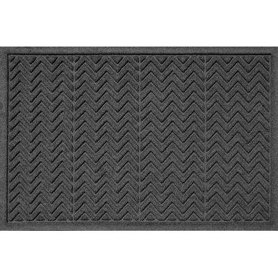 Aqua Shield Chevron Doormat Rug Size: 2 x 3, Color: Charcoal