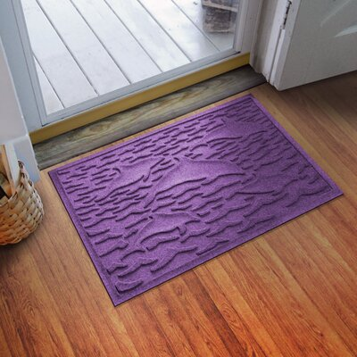 Conway Statement of Porpoise Doormat Color: Purple