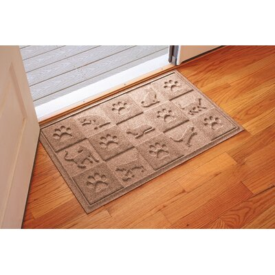 Aqua Shield Cat in the Doormat Color: Medium Brown