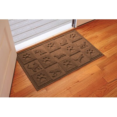 Aqua Shield Cat in the Doormat Color: Dark Brown