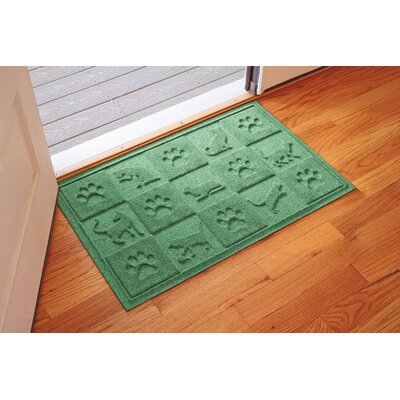 Aqua Shield Cat in the Doormat Color: Light Green