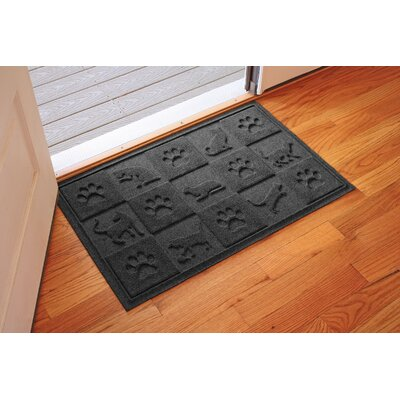 Aqua Shield Cat in the Doormat Color: Charcoal