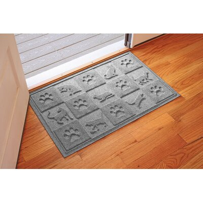 Aqua Shield Cat in the Doormat Color: Medium Gray