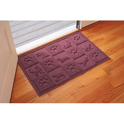 Aqua Shield Cat in the Doormat Color: Bordeaux