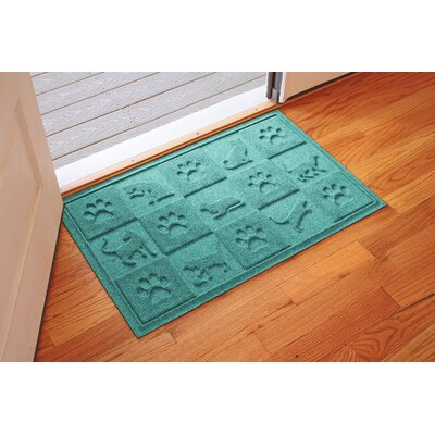 Aqua Shield Cat in the Doormat Color: Aquamarine