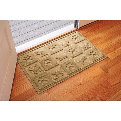 Aqua Shield Cat in the Doormat Color: Gold