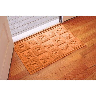 Aqua Shield Cat in the Doormat Color: Orange