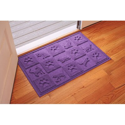 Aqua Shield Cat in the Doormat Color: Purple