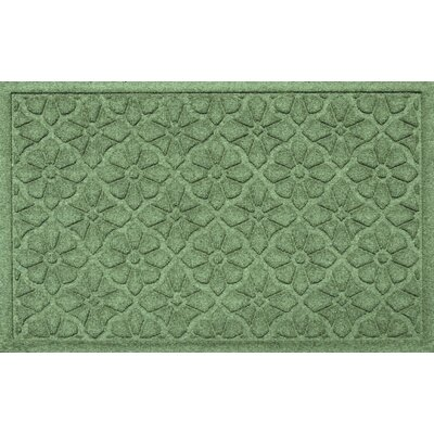 Aqua Shield Medallion Doormat Color: Light Green