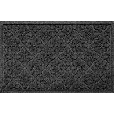 Aqua Shield Medallion Doormat Color: Charcoal