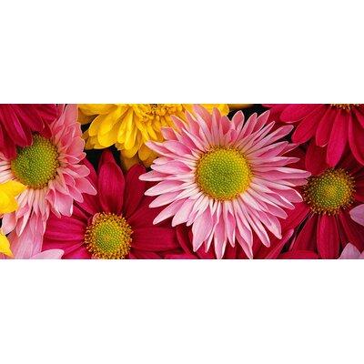 Fo Flor Flowers Doormat Rug Size: Rectangle 21 x 5