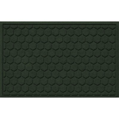 Finnerty Honeycomb Doormat Color: Evergreen