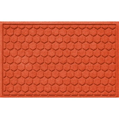 Finnerty Honeycomb Doormat Color: Orange