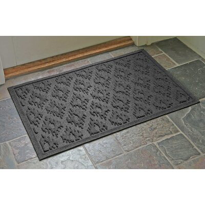 Aqua Shield Ikat Doormat Color: Charcoal, Rug Size: Rectangle 22 x 31
