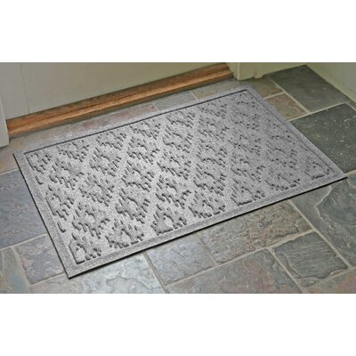 Aqua Shield Ikat Doormat Color: Medium Gray, Rug Size: 22 x 31