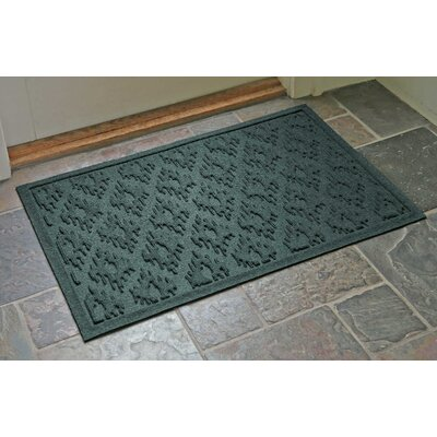 Aqua Shield Ikat Doormat Color: Evergreen, Mat Size: Rectangle 22 x 31
