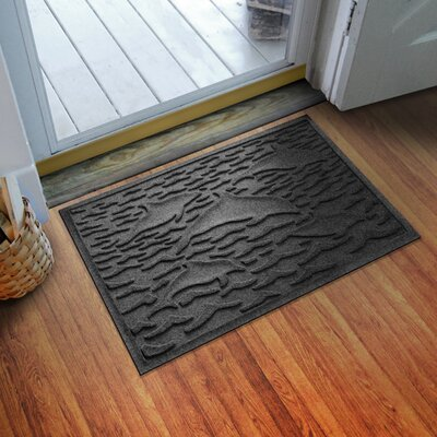 Conway Statement of Porpoise Doormat Color: Charcoal