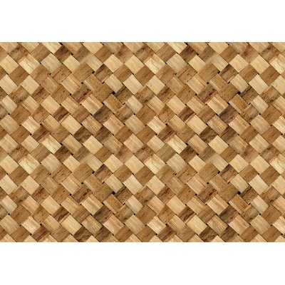 Fo Flor Basketcase Doormat Rug Size: Rectangle 25 x 60, Color: Multi