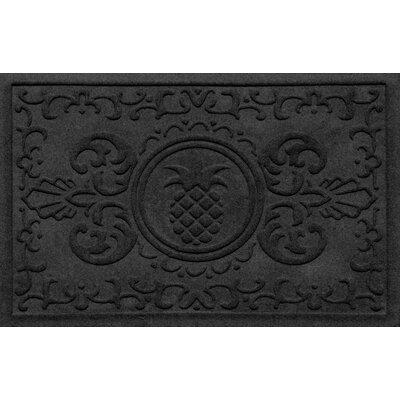 Aqua Shield Baroque Pineapple Doormat Color: Charcoal