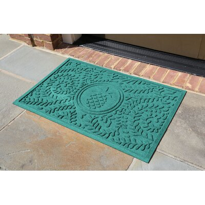 Conway Boxwood Pineapple Doormat Color: Aquamarine
