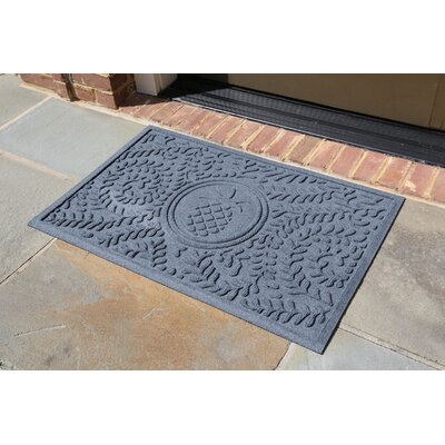 Conway Boxwood Pineapple Doormat Color: Bluestone