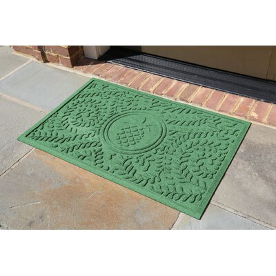Conway Boxwood Pineapple Doormat Color: Light Green