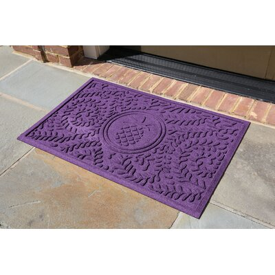 Conway Boxwood Pineapple Doormat Color: Purple