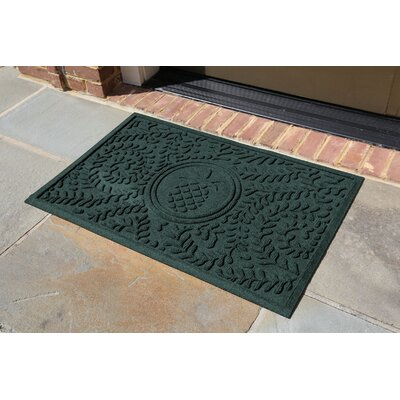 Conway Boxwood Pineapple Doormat Color: Evergreen