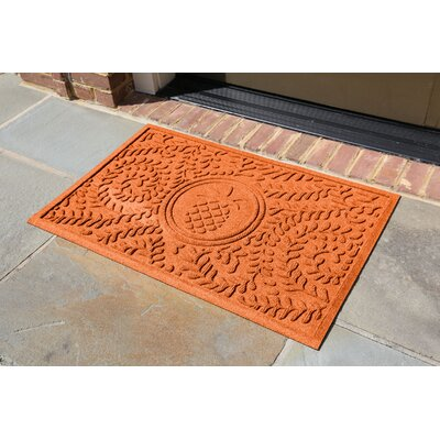 Conway Boxwood Pineapple Doormat Color: Orange