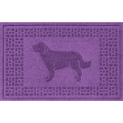 Conway Golden Retriever Doormat Color: Purple