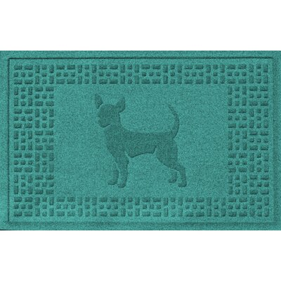 Aqua Shield Chihuahua Doormat Color: Aquamarine