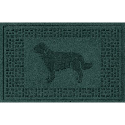 Conway Golden Retriever Doormat Color: Evergreen