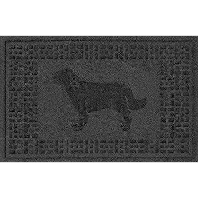 Conway Golden Retriever Doormat Color: Charcoal