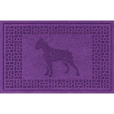 Aqua Shield Boxer Doormat Color: Purple