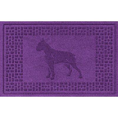 Aqua Shield Boxer Doormat Color: Purple