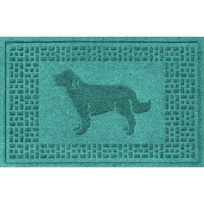 Conway Golden Retriever Doormat Color: Aquamarine
