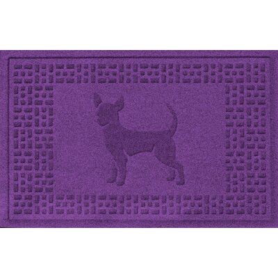 Aqua Shield Chihuahua Doormat Color: Purple