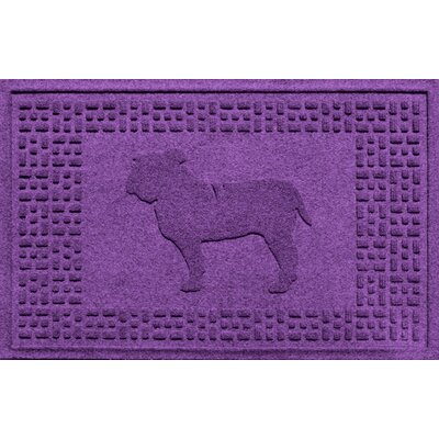 Aqua Shield Bulldog Doormat Color: Purple
