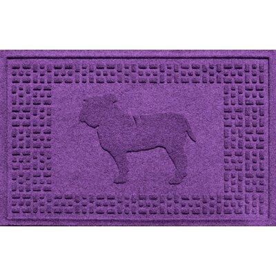 Aqua Shield Bulldog Doormat Color: Purple