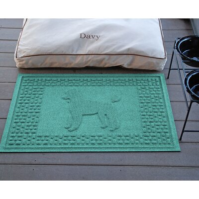 Aqua Shield Poodle Doormat Color: Aquamarine