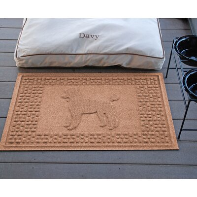 Conway Poodle Doormat Color: Medium Brown
