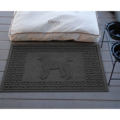 Conway Poodle Doormat Color: Charcoal