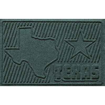 Aqua Shield Texas Doormat Color: Evergreen