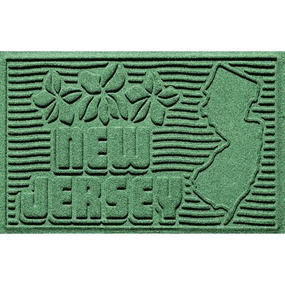 Aqua Shield New Jersey Doormat Color: Light Green