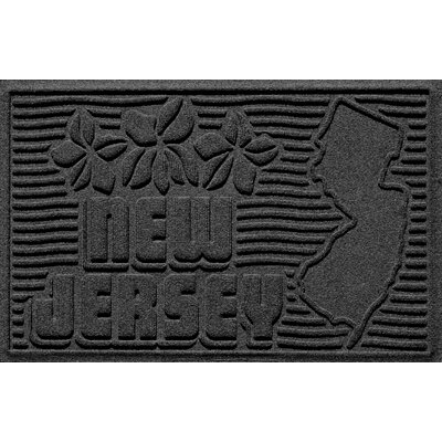 Aqua Shield New Jersey Doormat Color: Charcoal