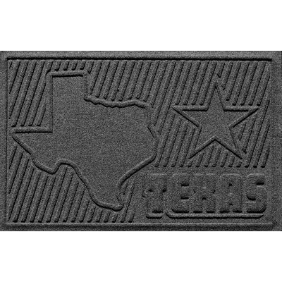 Aqua Shield Texas Doormat Color: Charcoal