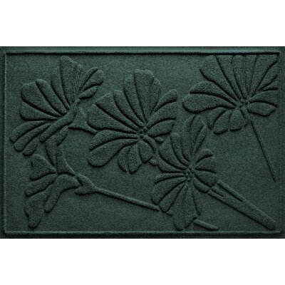 Aqua Shield Spring Flowers Doormat Color: Evergreen