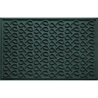 Aqua Shield Cunningham Doormat Color: Evergreen