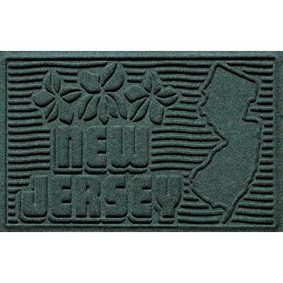 Aqua Shield New Jersey Doormat Color: Evergreen