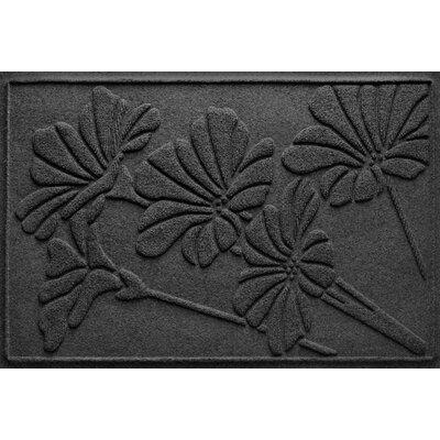 Aqua Shield Spring Flowers Doormat Color: Charcoal